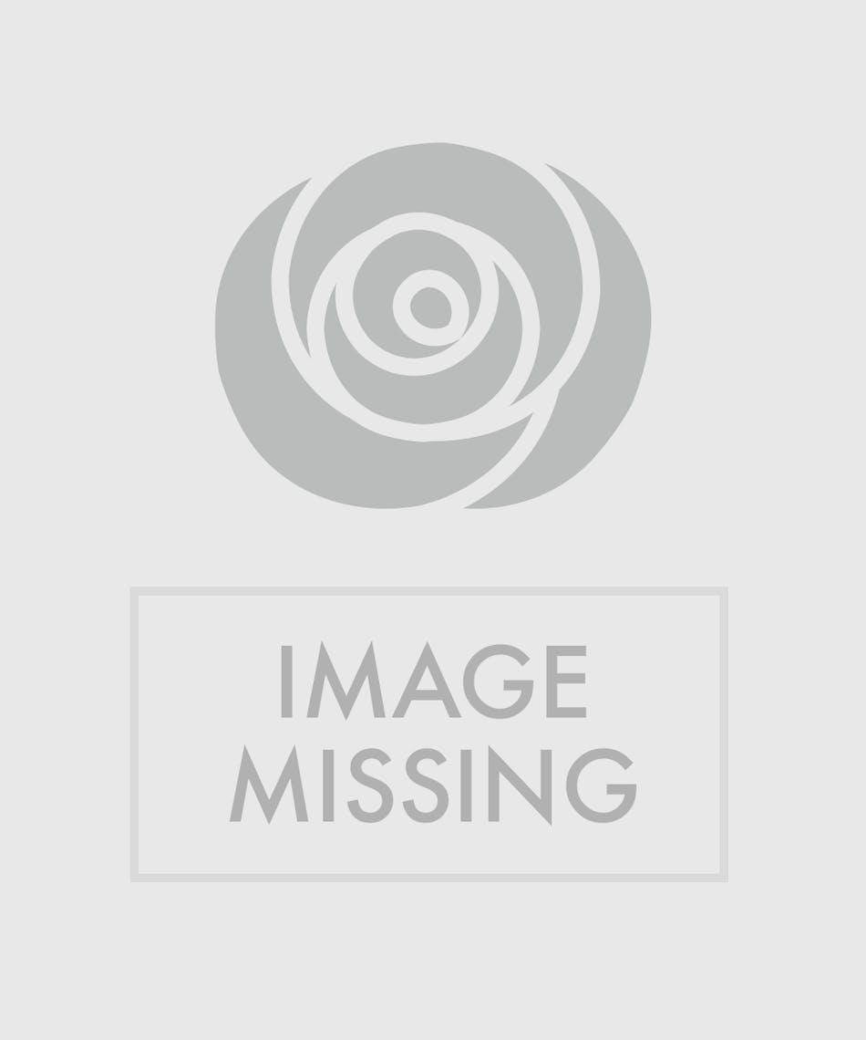 Dozen Valentines Day Roses San Mateo Ca Florist Ah Sam Florist
