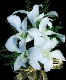 Five Dendrobium Orchids Rhinestone Wristlet