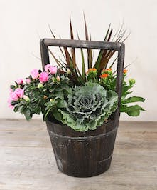 Charm their day with the rustic tones of an urban garden with seasonal accents in a rectangular wood-tone planter.