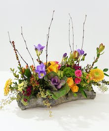 The rites of Spring are bursting with color is our Woodland Spring centerpiece with roses, dianthus, freesia, hydrangea designed in a faux wood vessel.