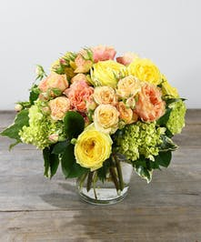 A lovely collection of premium pastel garden and spray roses accented with green hydrangea designed in a leaf lined classic glass vase. A lush and beautiful collection of cheerful premium garden and spray roses in hues of yellow and peach accented with green hydrangea designed in a leaf lined classic glass vase. This lovely arrangement is sure to wow.