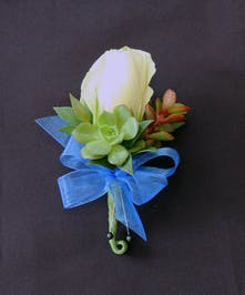 A modern twist to the classic rose boutonniere with succulents.