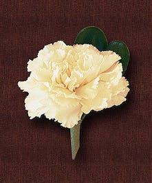 Single Carnation Boutonniere