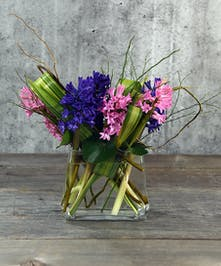 Springtime hyacinths, sweet and charming single-variety design, accented with foliage and arranged in our clear vase.