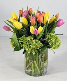Tulip Charm San Mateo (CA) Ah Sam Florist