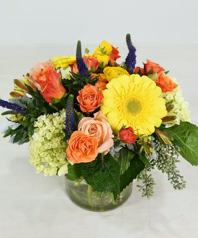 Blossoms of Joy Flower Arrangment - Same Day Delivery San Mateo, CA