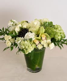 Moonlight Dreams is a contemporary blend of crisp whites and soothing greens. perfect for any celebration.  Featuring elegant white roses accented with green cymbidiums, succulents and fluffy hydrangeas, presented in a leaf-lined glass vase.