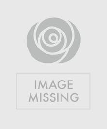 the perfect centerpiece for your traditional holiday celebration.  Our designers will select the loveliest holiday flowers, seasonal foliage and accents creating a lush and low centerpiece for the holiday gathering.