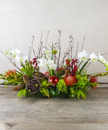 Bring the winter woodland landscape indoors with crimson roses, protea, phaleonopsis orchids and natural elements of pinecones, mossy branches and holiday ornaments.